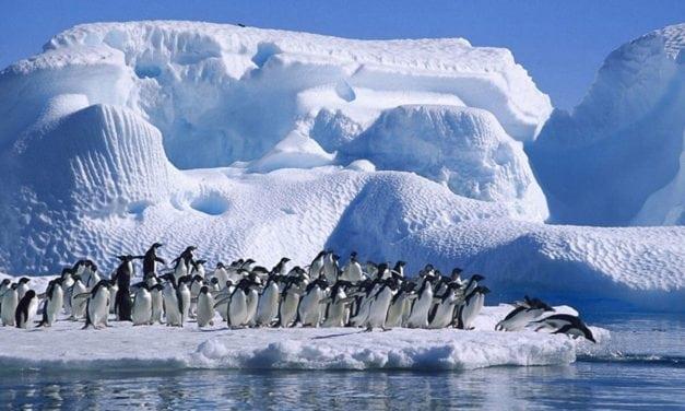 La Antártida se derrite a un ritmo mucho más acelerado de lo que sabemos
