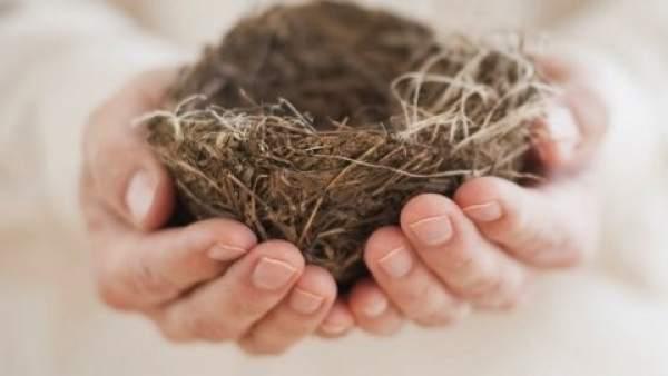 El nido vacío ¿Oportunidad o crisis de pareja?.