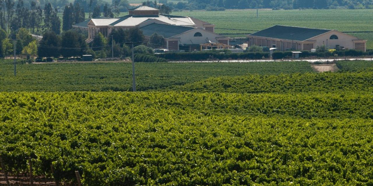 Reportajes-Kradiario: La perfecta selección del vino para una buena cena en vacaciones