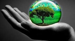Semana del medio ambiente: garantizar el futuro de la vida y de la Tierra