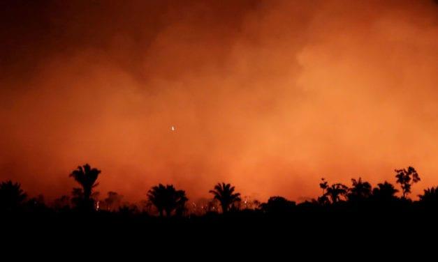 La tragedia de la Amazonía: Bolsonaro culpa de los incendios a los ecologistas