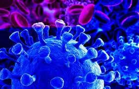 OMS: Todo indica que el coronavirus «quiere quedarse a vivir» para siempre en el planeta Tierra