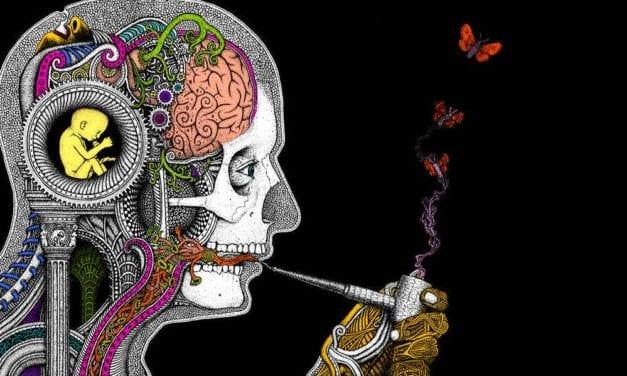 COMENTANDO COMENTARIOS: DE LA ANOMIA AL NIHILISMO – el narcotráfico, la política y el Poder Judicial-