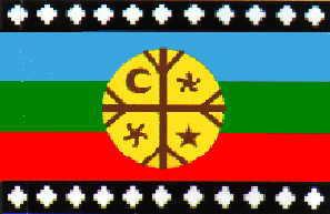 Mapuche: Gente de la tierra