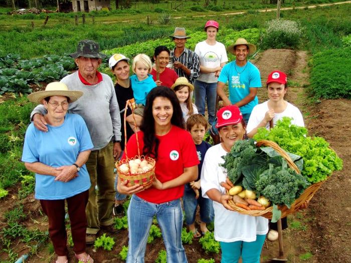 CHile: EL POTENCIAL DE LA AGRICULTURA FAMILIAR CAMPESINA