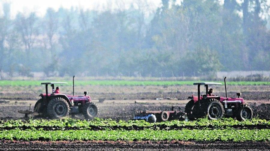 CHILE: RESPONSABILIDAD SOCIAL DE LA PROPIEDAD AGRARIA