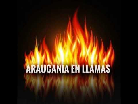Piñera llamó a Poderes del Estado y a chilenos de buena fe a buscar acuerdos para erradicar la violencia en la Araucanía