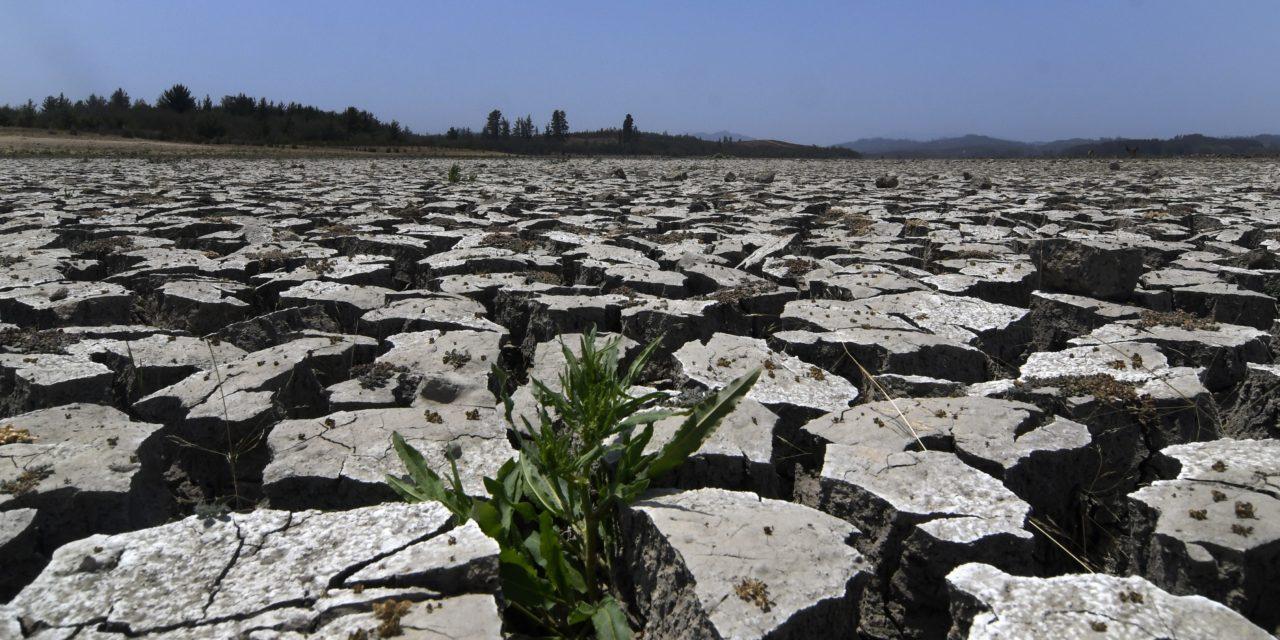 Estamos llegando a las finales con el cambio climático ¿Quién puede salvar al planeta?: Sólo nosotros mismos