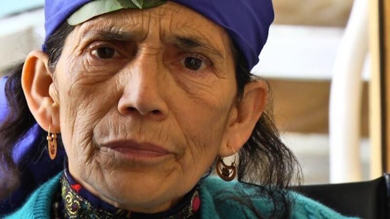 """Y comenzó """"la guerra"""" declarada en la Constituyente entre mapuches y derechistas – Acusación: Racismo"""
